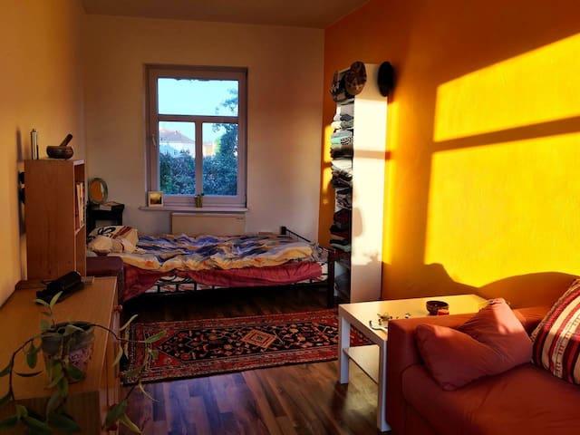 Sunny, spacious room in BEST spot in Kreuzberg