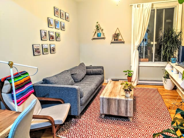 Spacious one bedroom in the heart of Saint Henri !
