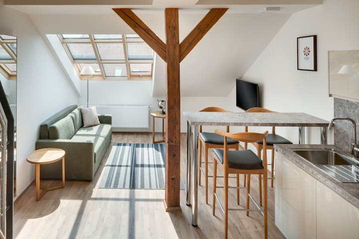 Deluxe Duplex One-Bedroom Apartment