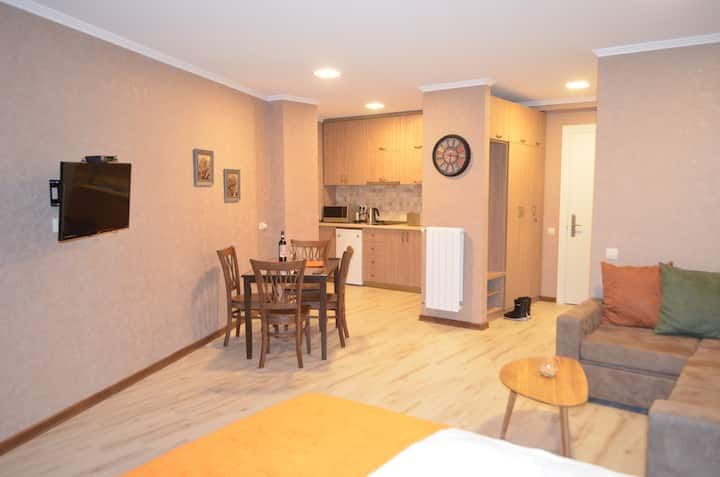 New Gudauri sweet apartment