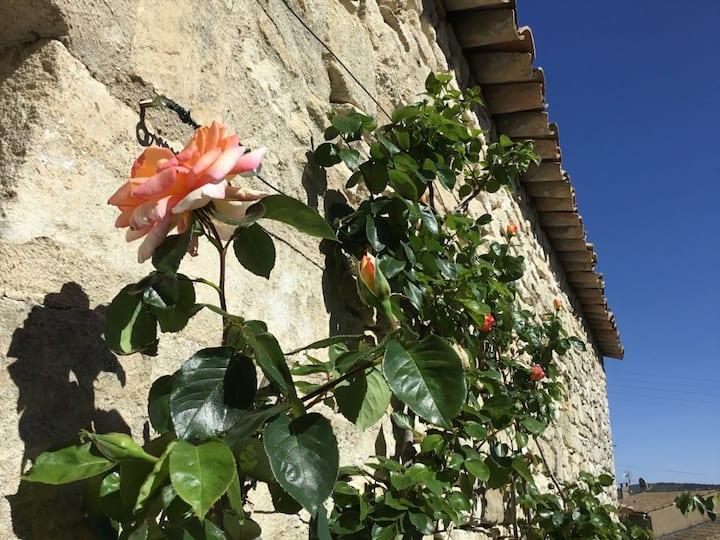 Le Soleil Bleu - Une maison de charme en Provence
