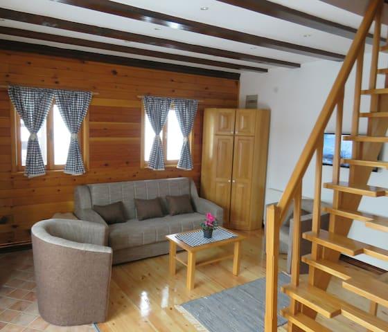 Guesthouse Stefanac 4+2