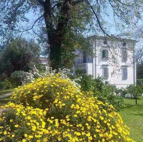Villa Lonardo B&B