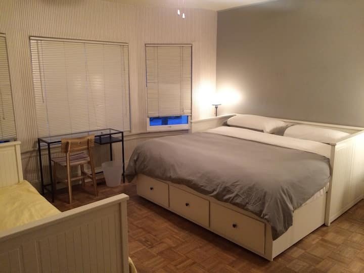 Big bright room downtown  / King bed