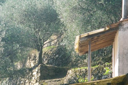 Lodge amongst the olives - Camporosso - Vierassviitti