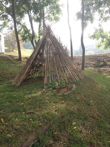 Bamboo Tipi -Camp near Asheville! - Canton