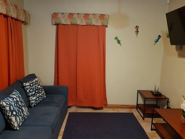 TV Room with Queen Sleep Sofa Bed