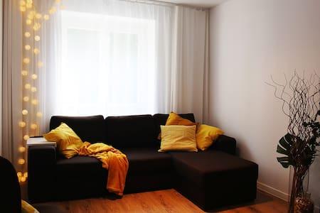 Cozy studio apartment near communication hub