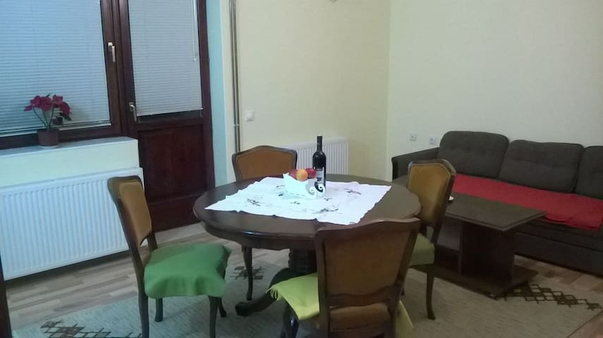 A private room in a spacious flat with garden - Novi Sad - Huis