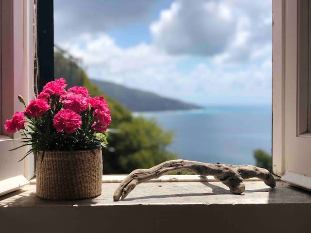 Mami's home palinuro