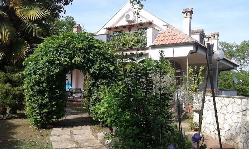 Splendida Villa vicino Roma - Zagarolo - Villa