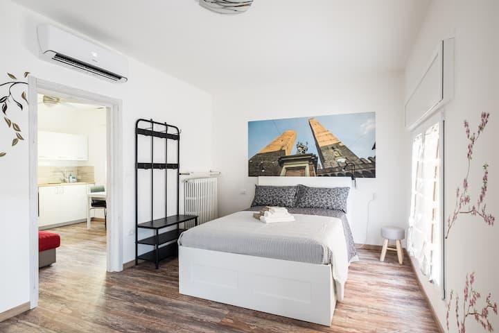 Casalecchio di Reno Centro Intero Appartamento