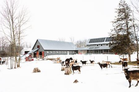Twig Farm - Holiday on a working Goat Farm