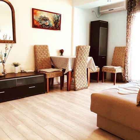Apartment Aleksandar ( 2 bedroom with terrace )