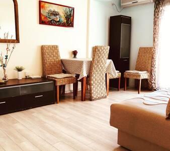Apartment Aleksandar №4 ( 2 bedroom with terrace )