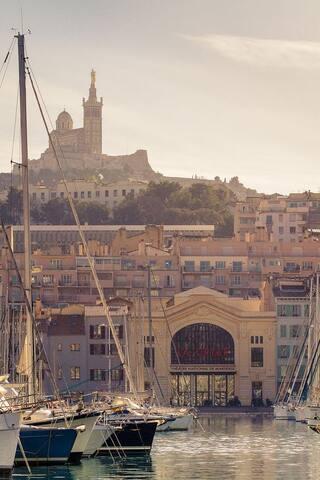 La Criée et le port