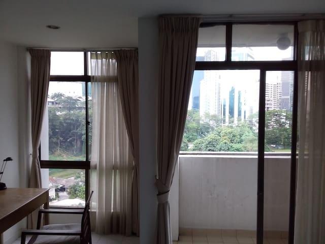 The view through the windows