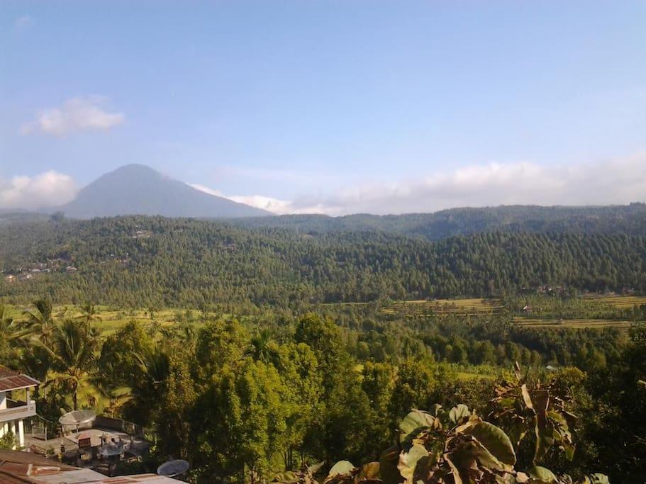 the view from Bali rahayu