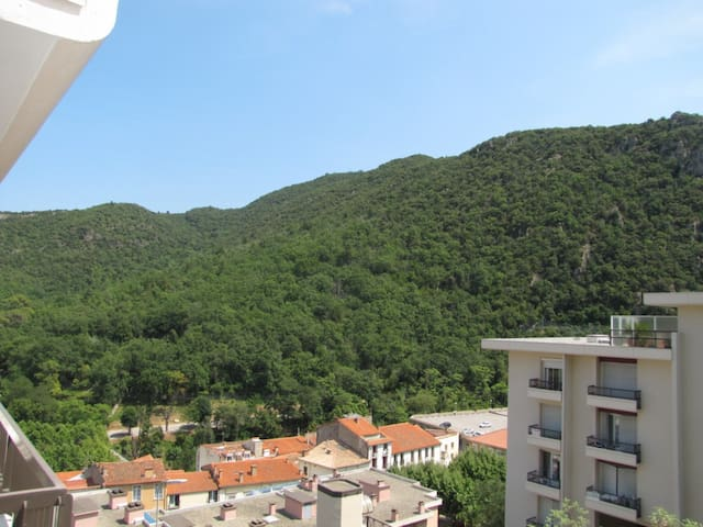 Résidence des Thermes - Amélie-les-Bains-Palalda - Huoneisto