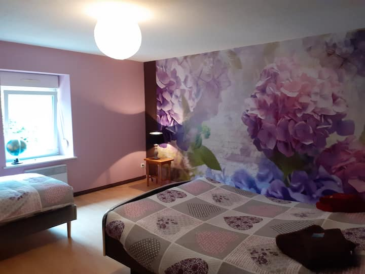 Appartement agréable  au coeur Saulxures/Moselotte