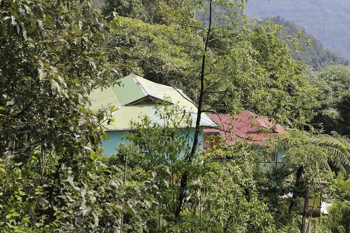 Vamoosetrail  Rinchenpong