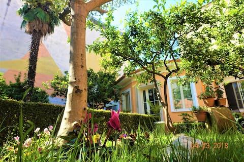 祕密花園-地拉那市中心360平方米的別墅