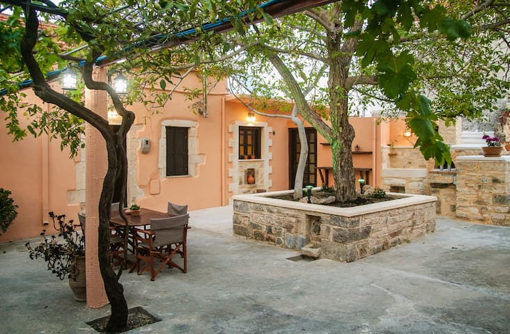 Stone Cottage with large Courtyard in Fres Village