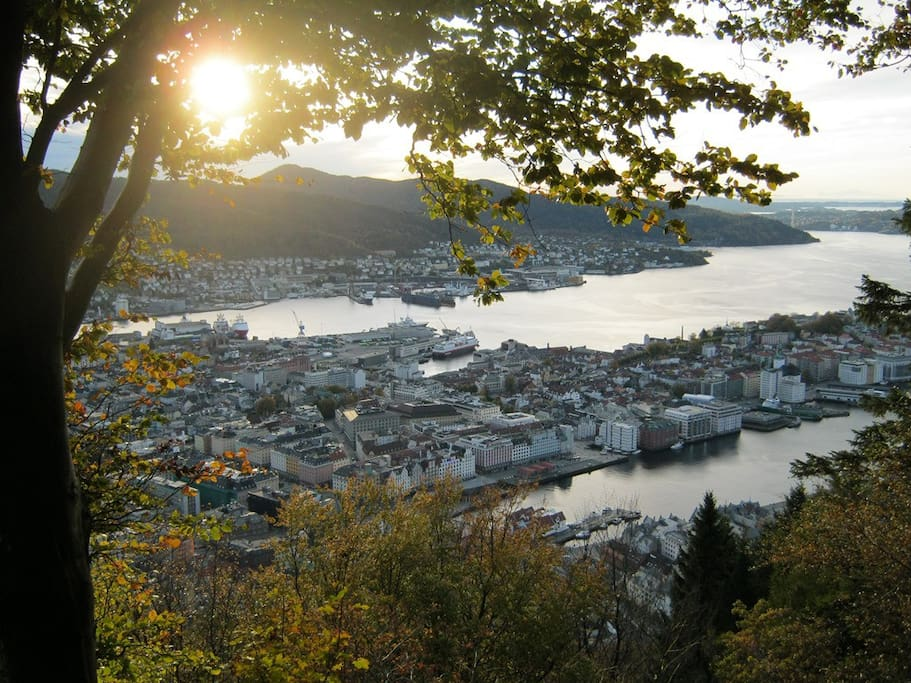 Right above our apartment you can find a lovely little promenade perfect for an evening walk or you can go all the way and hike up the famous Mount Fløien