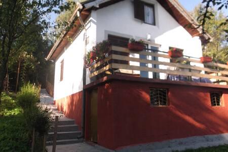 Villa Spartak Balkanac