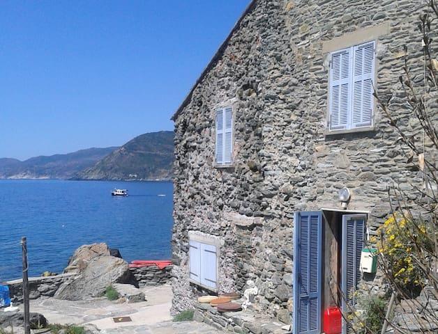 Maison au bord de l'eau. - Pino - House