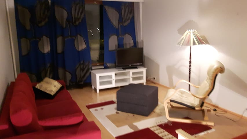 Elfs apartment at city center with WiFi