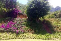 Vista hacía el bungaló