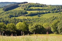 On the circular Roquerlan walk, one of our favourite local walks.  All in, about 7kms through pastures and woodlands high on the mountain behind the gite - not too far!