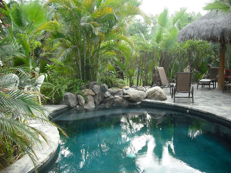 Our lagoon style swimming pool. Solar powered and heated.
