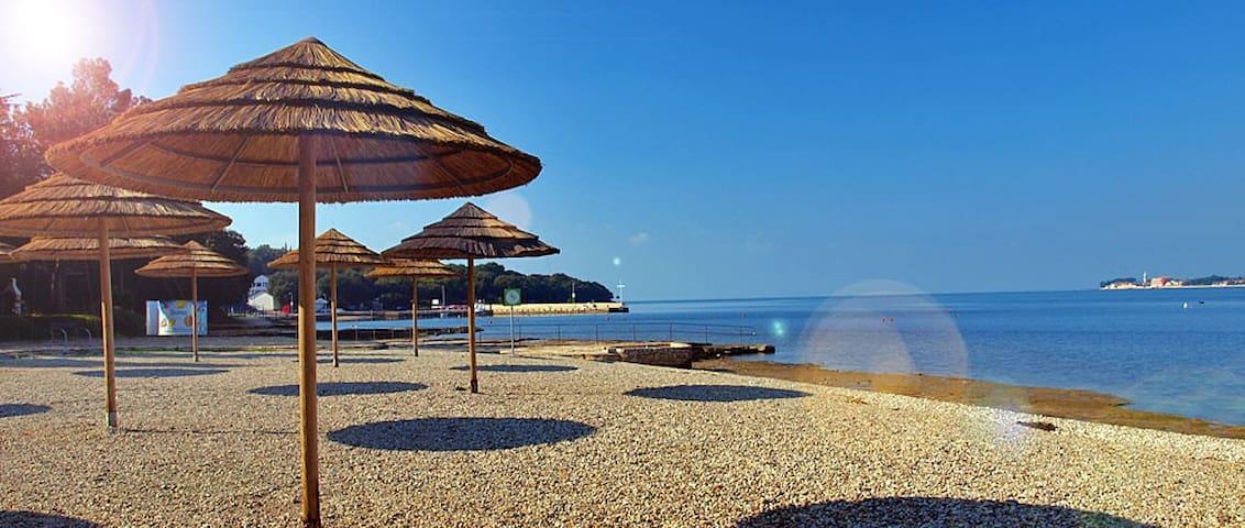Villa Baldi - house with pool in Tar, Croatia APP6 - Tar