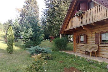 Relaxing cabin  - Dolenjske Toplice