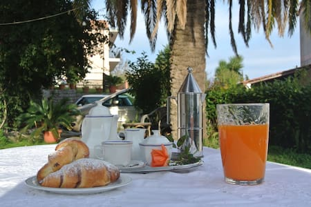 B&B Le Fontanelle  - Palinuro - Bed & Breakfast
