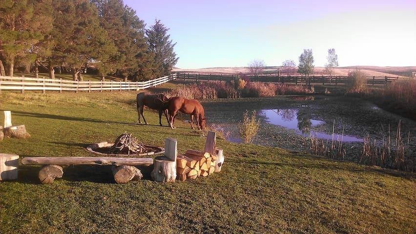 Granger Creek Farm Stay
