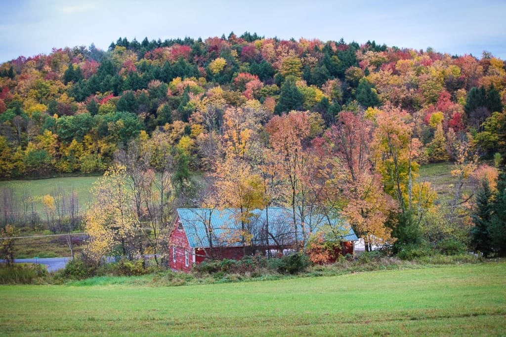 The Margaretville Barn. Barn #1 fall view from field holds 125 people for a reception.