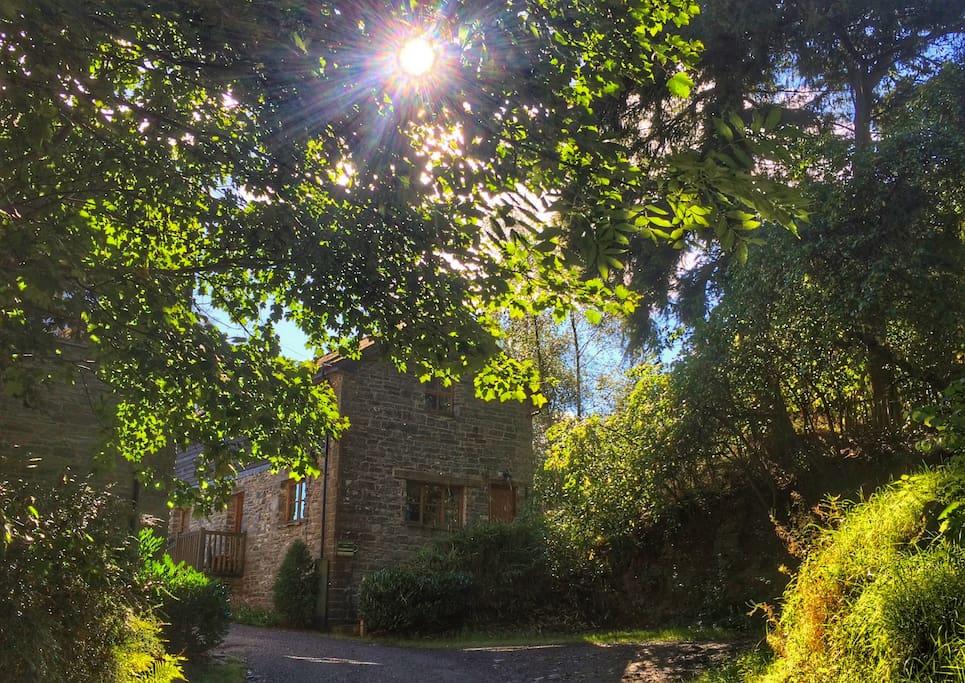 Barn End Cottage