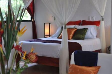 Queen  bed(shown) in Superior room.