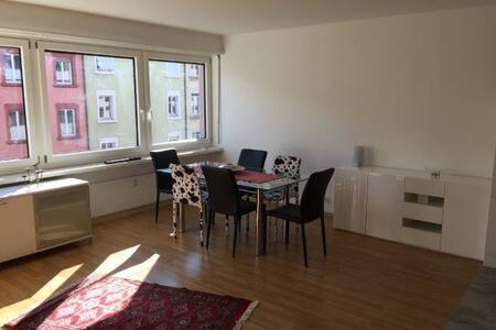 Freshly renovated studio close to the Rhein - Basel - Lejlighed