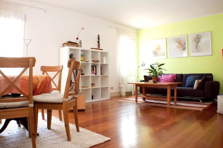Beautiful flat in Logroño Center