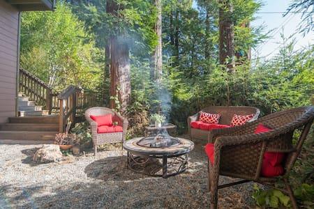 A Redwood Grove Retreat
