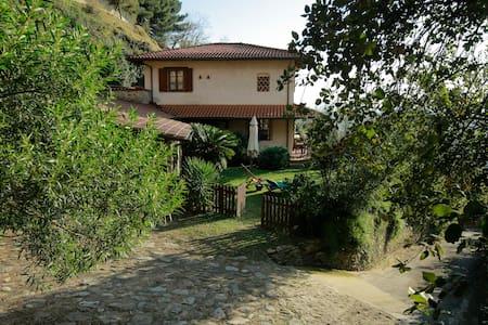 LA SELVACCIA Sea-view Country House - Località Strettoia, Comune di Pietrasanta
