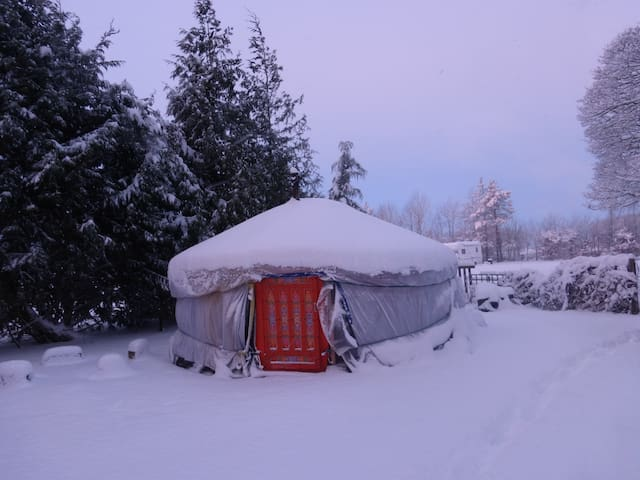 Mongolian Yurt with Heated bathroom - Buxton - Rundzelt