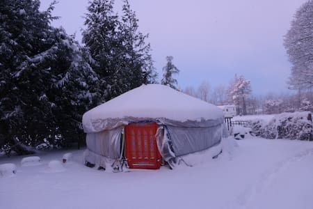 Mongolian Yurt with Heated bathroom - Buxton