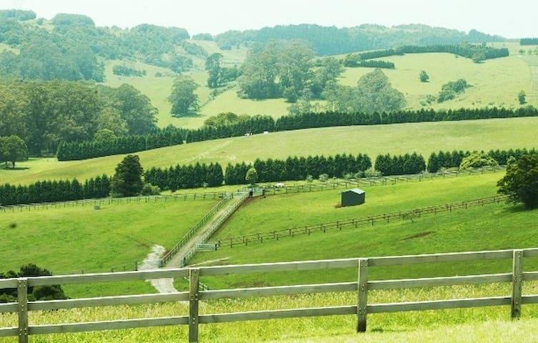 WILDWOOD HILL. Luxury barn loft set on 100 acres.