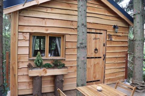 La cabane dans les arbres