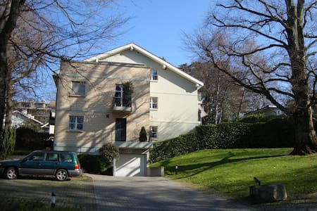 Beautiful apartment in Carouge / Geneva - Carouge - Wohnung